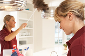residential cleaning and green care